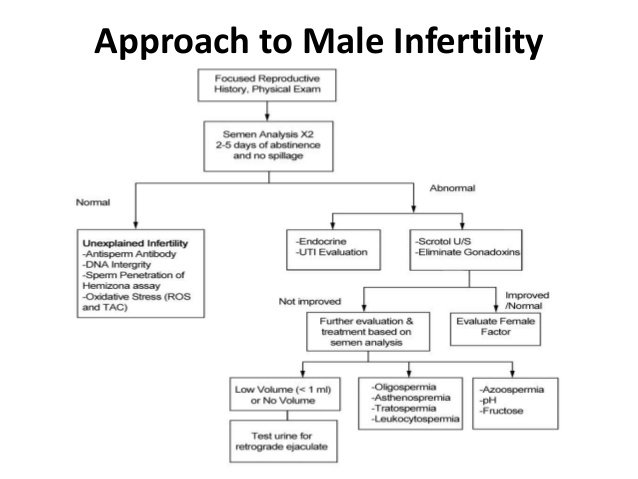 infertility approach lecture